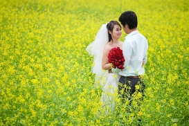 tour-du-lich-gia-re-honeymoon-da-lat